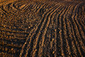 Black Soil Plowed Field. Earth Texture Royalty Free Stock Photography - 95525297