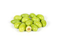 Green Young Olive Stock Images - 95599384
