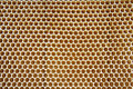 Honey Texture Royalty Free Stock Images - 9577719