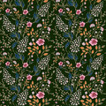 Vector Seamless Bright Colorful Gentle Hand Drawn Little Ditsy Flower Pattern. Bright Floral Allover Print On Black Royalty Free Stock Images - 95710639