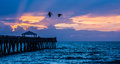 Pelicans Over The Fishing Pier Royalty Free Stock Image - 95778476