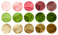 Watercolor Circles In Shades Of Green, Pink, Red And Brown Colors Isolated On White Background. Royalty Free Stock Photography - 95804557