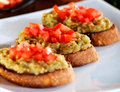 Closeup Of Crusty Bruschetta With Eggplants And Chopped Tomatoes Royalty Free Stock Image - 95821146