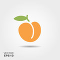 Illustration Of Peach Flat Icon With Shadow Royalty Free Stock Photos - 95899068