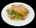 Tuna Salad With Lettuce And Tomatoes Isolated On The Black Background With Clipping Path. Stock Photography - 95949242