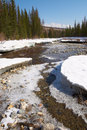 Red River, White Ice And Green Firs. Stock Photography - 962682