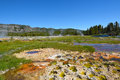 Hot Spring In The Biscuit Basin Royalty Free Stock Photos - 96000348