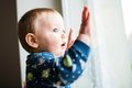 Curious Little Boy Watching On The Window Stock Photo - 96049030
