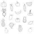 Set Of Fruits And Vegetables Royalty Free Stock Photography - 96068797