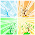 Four Seasons Tree Stock Photo - 9618370