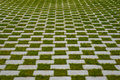 Grass And Cobblestone Pavement , Checkered Floor Stock Images - 96122604