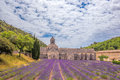 Lavender Fields With Senanque Monastery In Provence, Gordes, France Royalty Free Stock Photos - 96156208