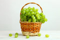 Grapes In A Basket Royalty Free Stock Photography - 96231947