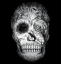 Hand Drawn Abstract Skull Made From Trees And Foliage Stock Photography - 96294032