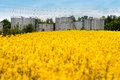 Field Of Rapeseed Blossoming, A Grain Silo Behind Royalty Free Stock Photo - 96358735
