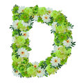 Letter D From Green And White Flowers Isolated On White Stock Images - 96360784