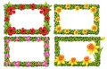 Frame Template With Colorful Flowers Stock Photos - 96370573