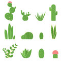 Flat Vector Set Of Cacti And Succulents. Cartoon Illustration Of Cactus Royalty Free Stock Photo - 96403265