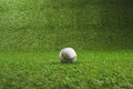 White Baseball Ball On Green Grass Royalty Free Stock Images - 96459639
