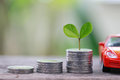 Green Seedlings Tree Grow On Coin Money Of Graph Business And Re Stock Image - 96460071