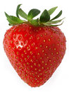 Strawberry Stock Photography - 9656992