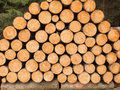 Many Stacked Wooden Trunks Stock Photo - 96559730