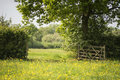 Beautiful English Countryside Landscape Image Of Meadow In Sprin Royalty Free Stock Photography - 96597217