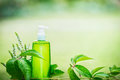 Green Cosmetic Product Bottle For Skin, Body Or Hair Care With Green Leaves At Green Nature Background, Front View. Natural Cosmet Stock Photos - 96598053