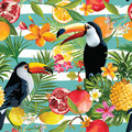 Seamless Tropical Fruits And Toucan Pattern Royalty Free Stock Image - 96612836
