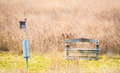 Weathered Wooden Bench With Red Bird On Bird Feeder In A Field Royalty Free Stock Image - 96629506
