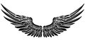 Eagle Bird Or Angel Wings Stock Image - 96663261