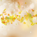 Autumn Leaves Theme Background. EPS 10 Vector Royalty Free Stock Photography - 96691507