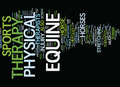 Equine Physical Therapy Text Background  Word Cloud Concept Royalty Free Stock Image - 96695726