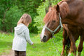 Horse And Little Girl. Stock Images - 9672394