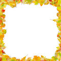 Autumn Leaves Frame Isolated On White. EPS 10 Vector Stock Photo - 96746290