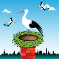 Stork In A Nest Stock Photo - 9684830