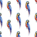 Bright Colorful Beautiful Lovely Sophisticated Jungle Tropical Yellow, Green, Red And Blue Big Tropical Parrots Diagonal Pattern  Stock Image - 96883511