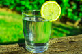 Glass Of Pure Water With Lemon Wedge Circle On Wood Log, Green Grass Plants In The Background, Outdoors, Bright Sunlight Stock Image - 96915901