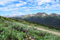 Sheep Mountain As Seen From The Ute Trail In Rocky Mountain National Park. Royalty Free Stock Image - 96946686