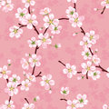 Seamless Vector Pattern Of Blossoming Apple Branches Royalty Free Stock Image - 96951606