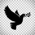 Flying Dove With Olive Twig Royalty Free Stock Photo - 97071345