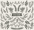 Hand Drawn Decorative Floral Elements Collection Royalty Free Stock Photos - 97073318