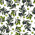 Vector Hand Drawn Seamless Pattern Of Olive Branches. Natural Cosmetic Products. Hair Care Oils. Farm Vegetables Royalty Free Stock Image - 97088386