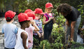 Teacher And Kids School Learning Ecology Gardening Stock Image - 97130711