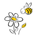 Bee And Flower Royalty Free Stock Image - 97138216