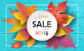 Autumn Sales Turquoise Wood Banner Royalty Free Stock Photo - 97201975