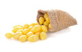 Ginkgo Nuts Royalty Free Stock Images - 97232139