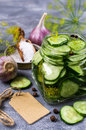 Sliced Canned Cucumbers Royalty Free Stock Photography - 97303467