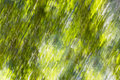 Diagonal Summer Green Motion Blur Background Stock Photo - 97315230