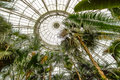 Greenhouse Royalty Free Stock Image - 97326066